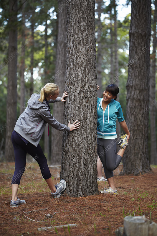 Runners stretching in forest