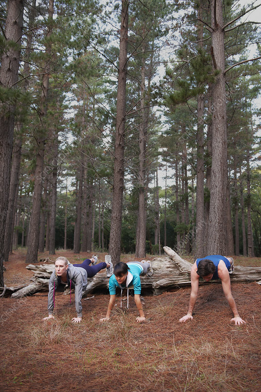Runners doing push-ups in forest