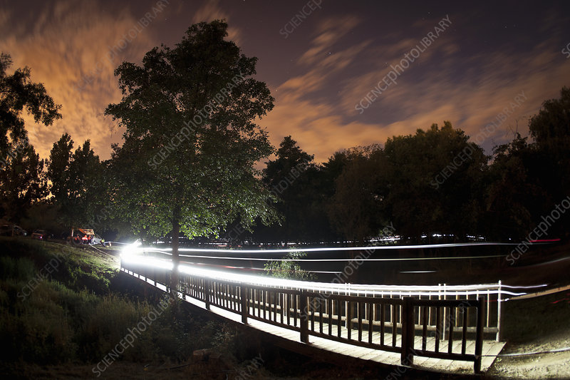 Trails of light from mountain bikers