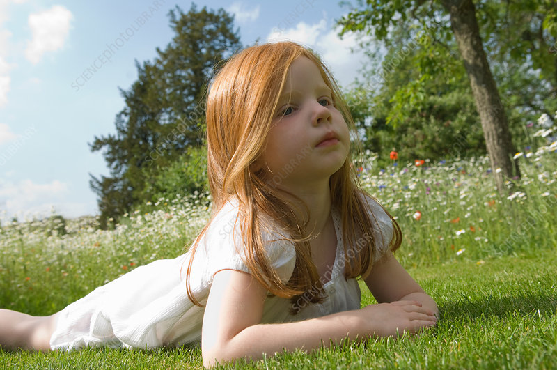 Girl laying on grass in field of flowers - Stock Image ...
