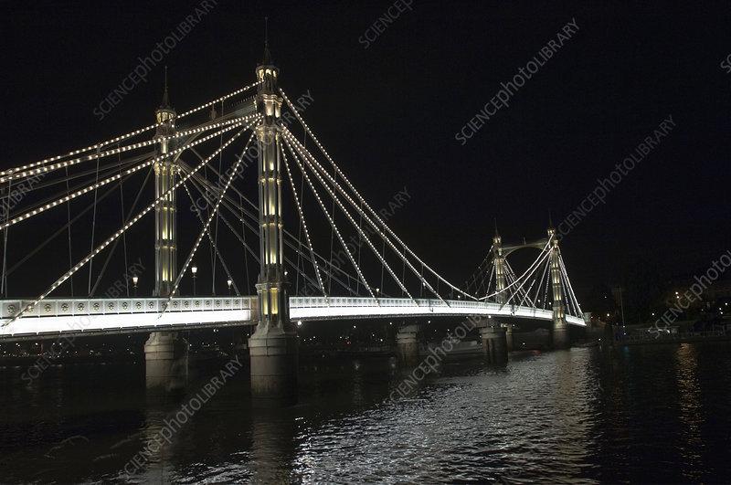 Albert Bridge lit up at night