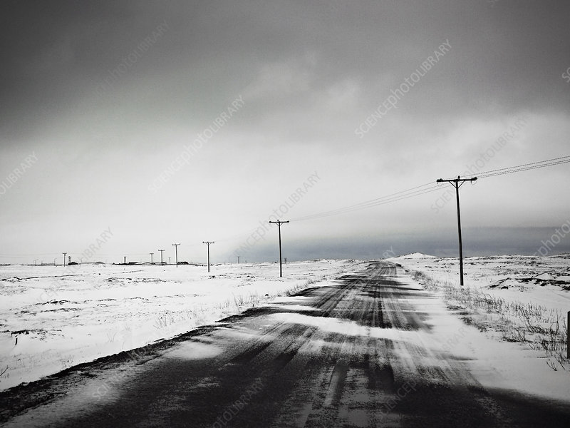 Telephone poles in snow covered field