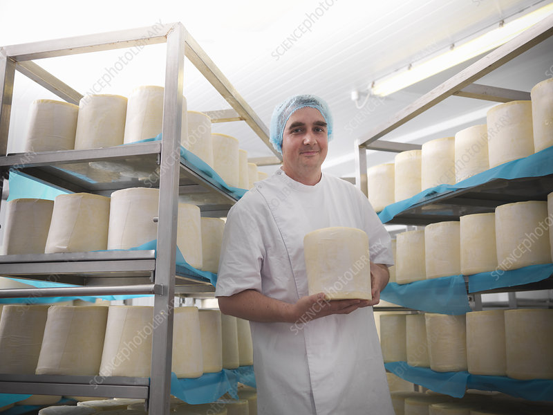 Worker holding cheese in factory