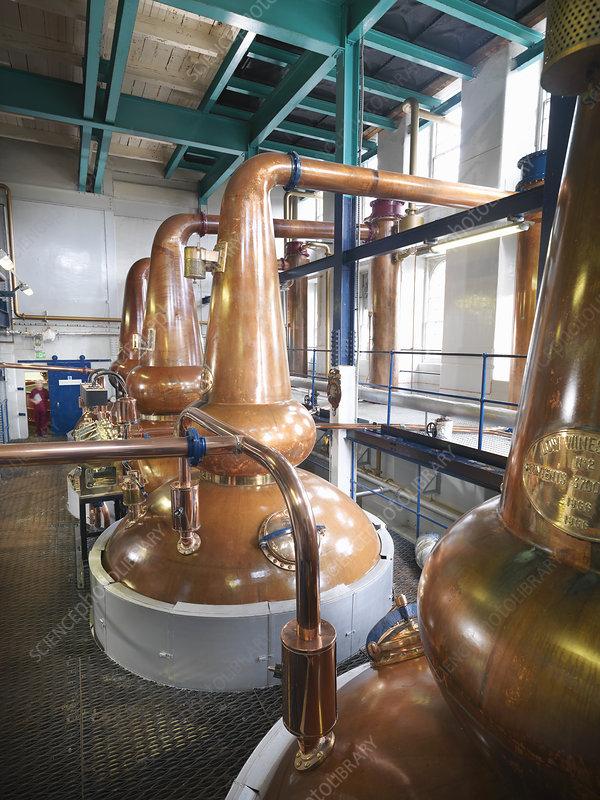 Whisky stills in distillery