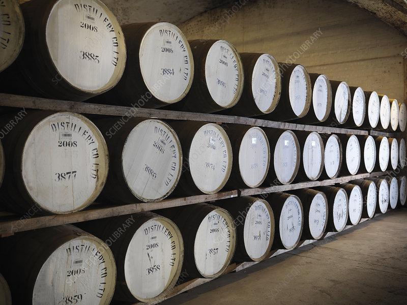 Barrels of whisky in distillery