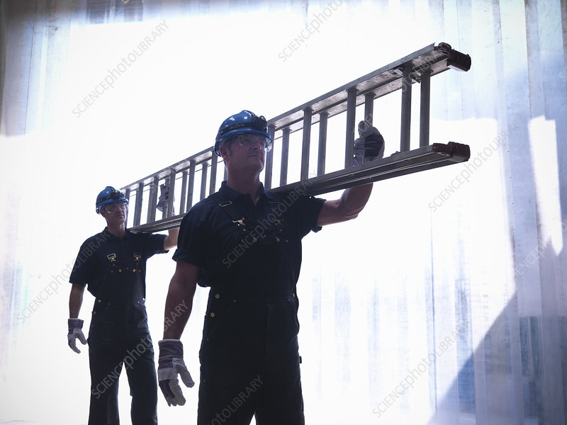 Workers carrying ladder together