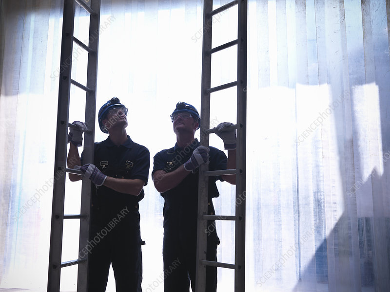 Workers holding ladders