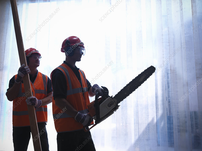 Workers with chainsaw and wooden plank