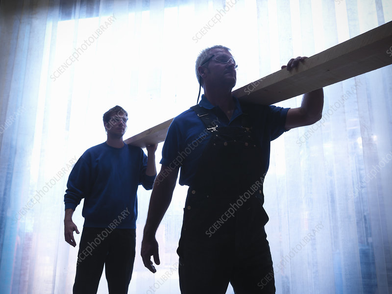 Workers carrying plank of wood together
