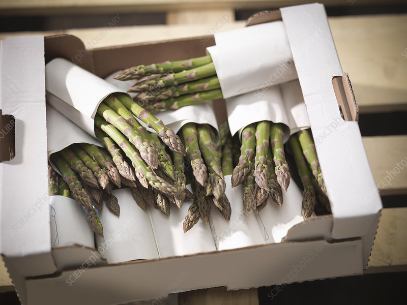 Close up of asparagus in box