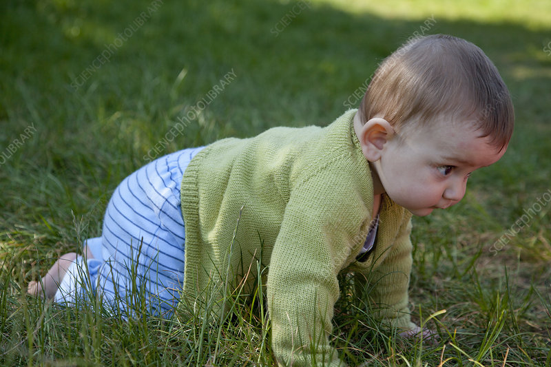 Baby boy crawling in grass