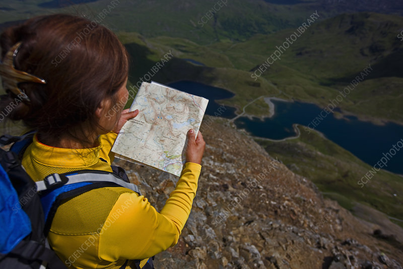 Hiker reading map on mountainside