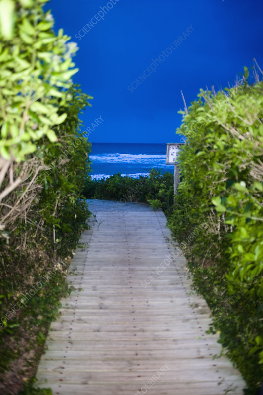 Wooden walkway leading to beach