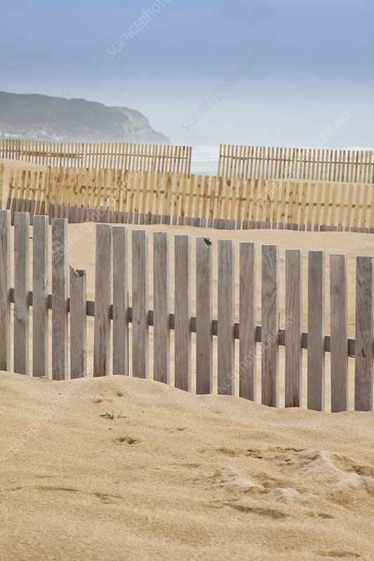 Wooden fences on beach