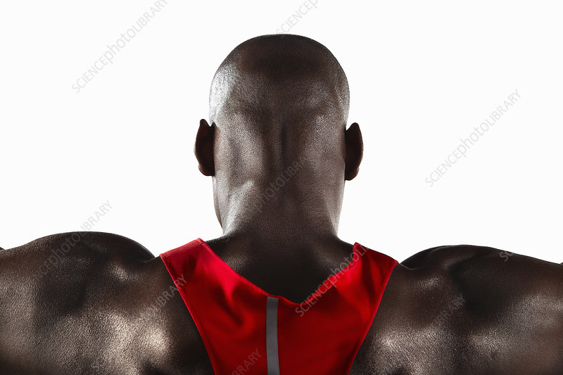 Close up of athlete's shoulder muscles