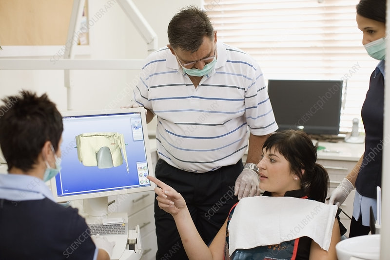 Woman examining model with dentist