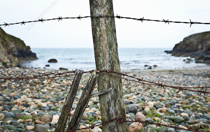 Barbed wire fence on rocky beach