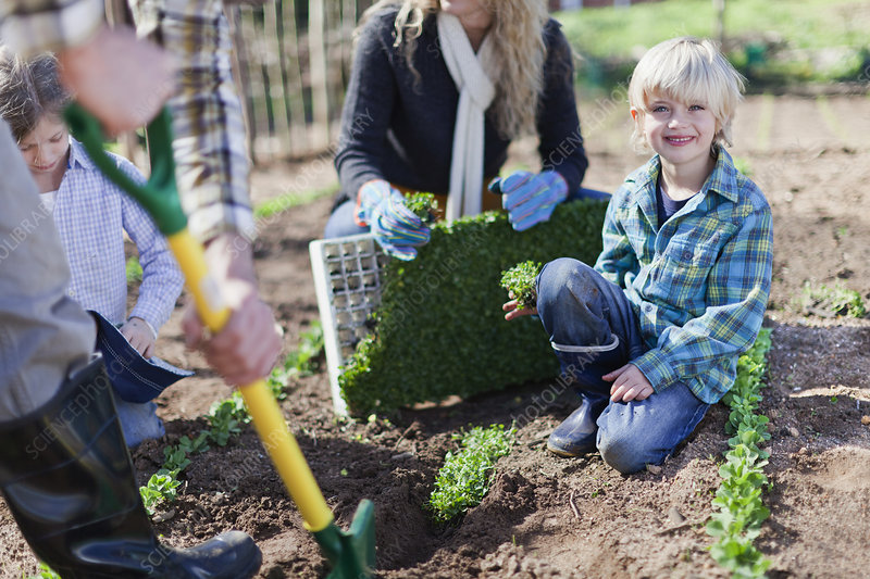 Family planting in garden together