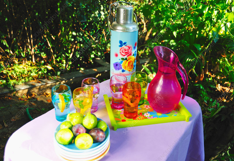 Fruit and beverages on picnic table
