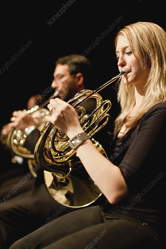 French horn players in orchestra - Stock Image F004/4660 ...