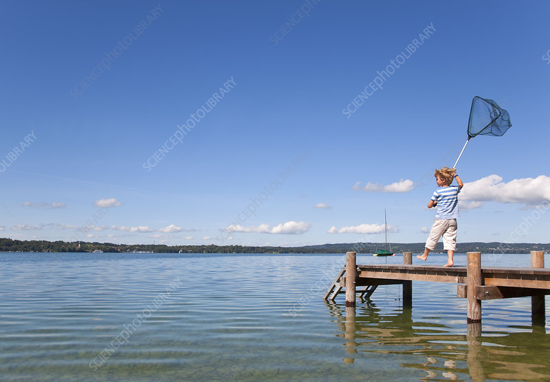 Boy fishing with net in lake