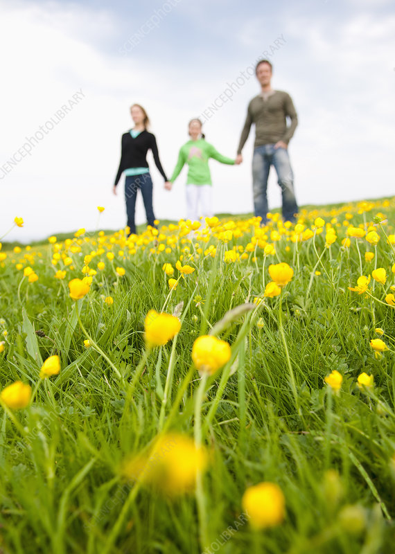 Family standing in field of flowers