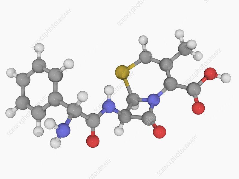 Cephalexin drug molecule