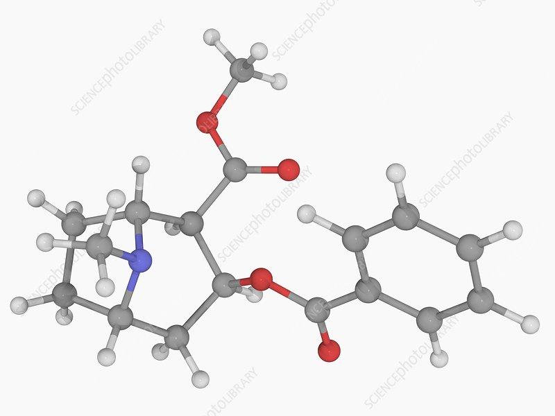 Cocaine drug molecule