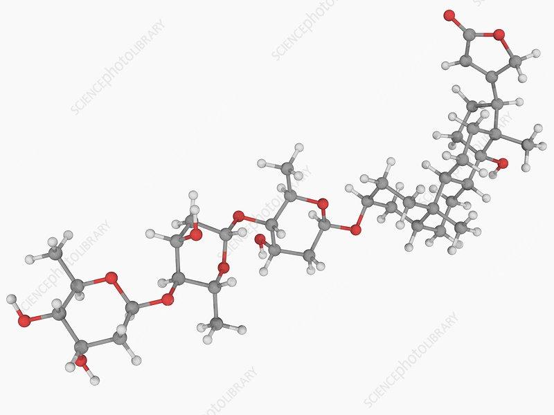 Digitoxin poison molecule