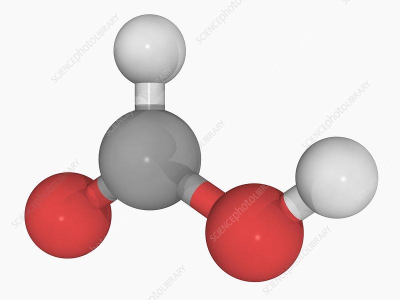 Formic acid molecule