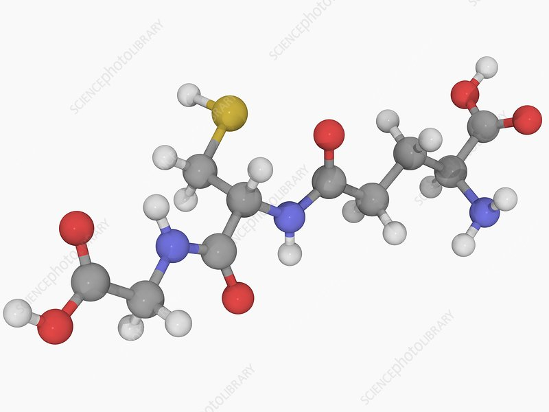 Glutathione molecule