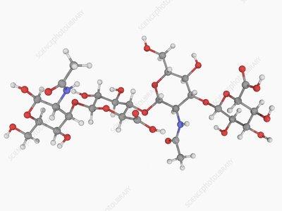 Hyaluronic acid molecule