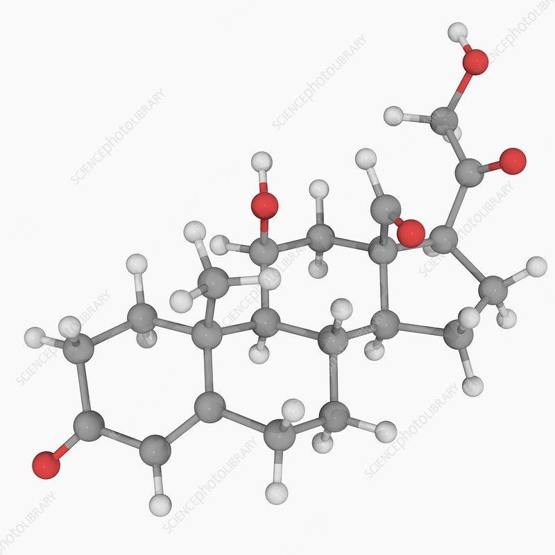 Hydrocortisone hormone molecule