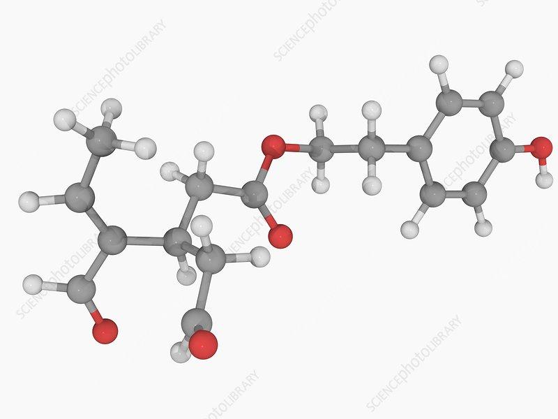 Oleocanthal molecule