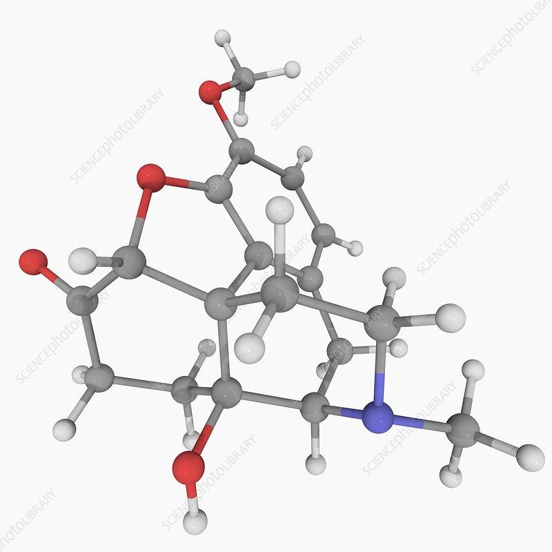 Oxycodone drug molecule