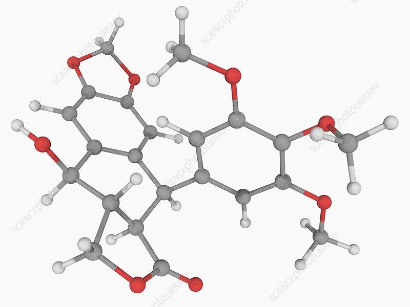podofillotoxin molecule - stock image f004  6571