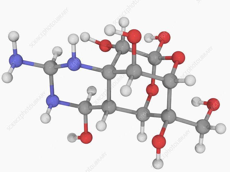 Tetrodotoxin TTX neurotoxin molecule