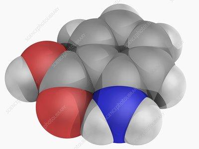 Anthranilic acid molecule