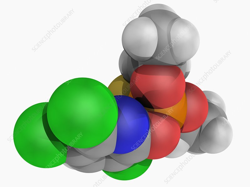 Chlorpyrifos insecticide molecule