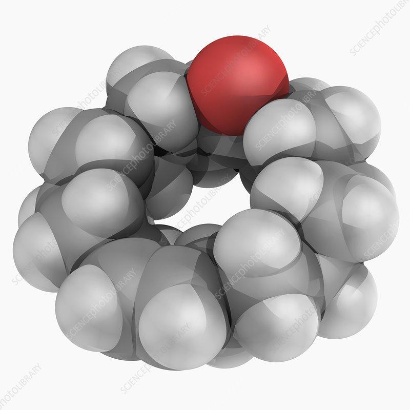 Civetone molecule