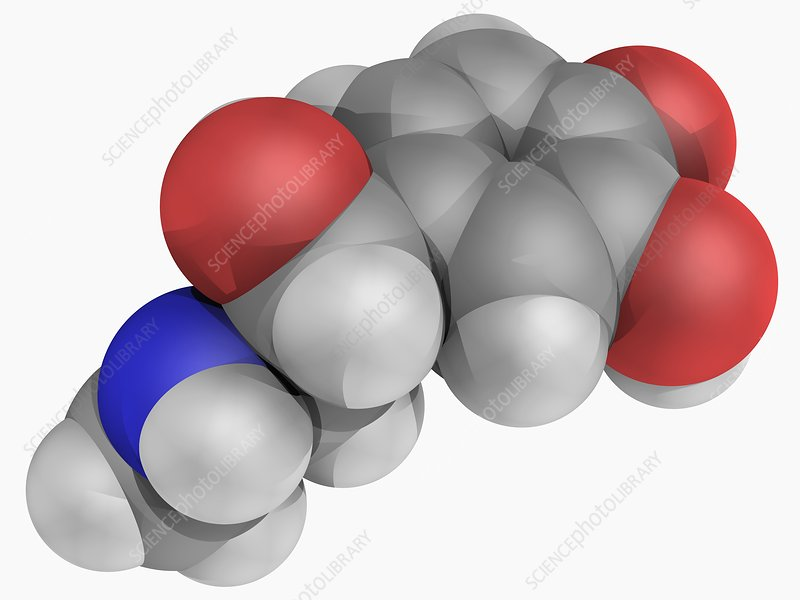 Epinephrine molecule
