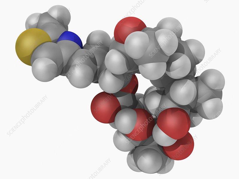 Epothilone B drug molecule