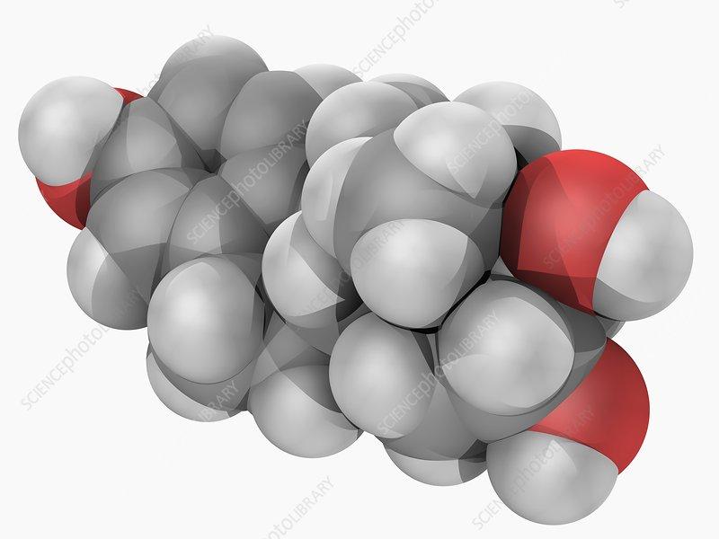 Estriol hormone molecule