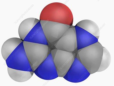 Guanine molecule