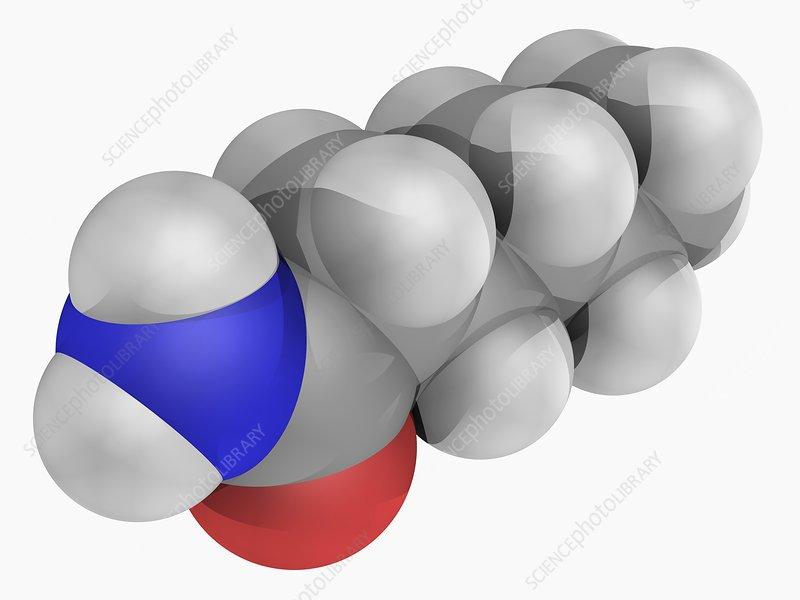 Hexanamide molecule