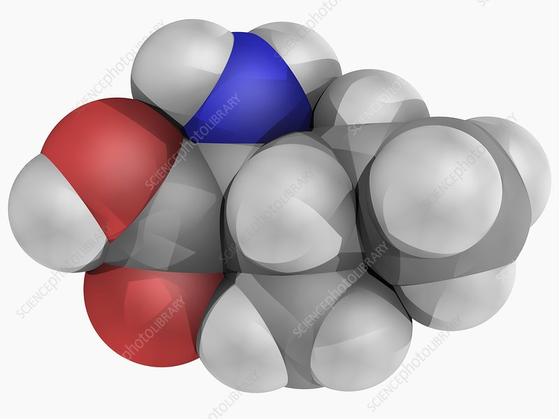 Isoleucine molecule