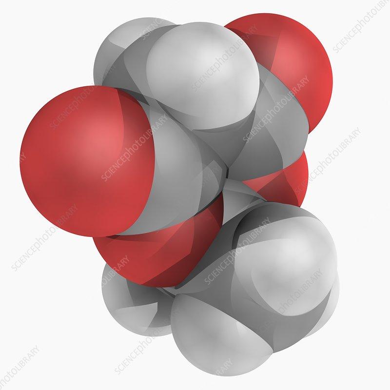 Meldrum's acid molecule