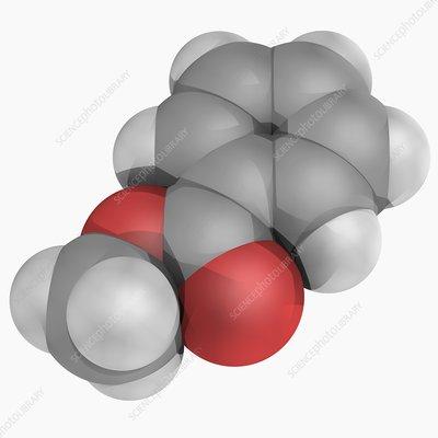 Methyl benzoate molecule