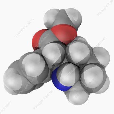 Methylphenidate drug molecule