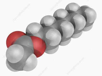 Octyl acetate molecule